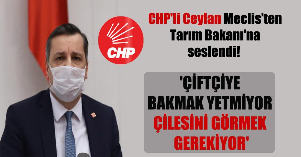 CHP'li Ceylan Meclis'ten Tarım Bakanı'na seslendi! 'Çiftçiye bakmak yetmiyor çilesini görmek gerekiyor'