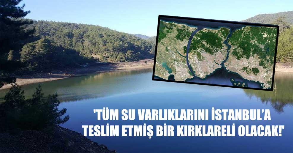 'Tüm su varlıklarını İstanbul'a teslim etmiş bir Kırklareli olacak!'