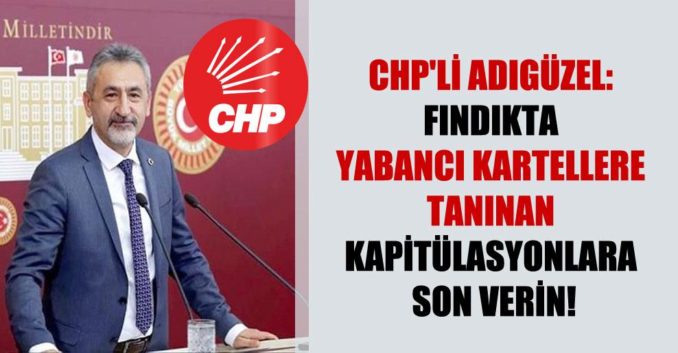 CHP'li Adıgüzel: Fındıkta yabancı kartellere tanınan kapitülasyonlara son verin!