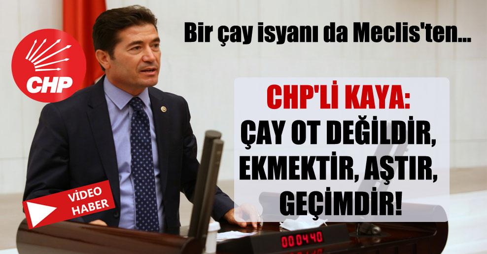 Bir çay isyanı da Meclis'ten… CHP'li Kaya: Çay ot değildir, ekmektir, aştır, geçimdir!