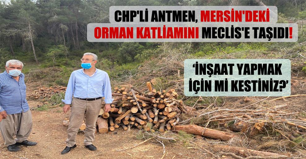 CHP'li Antmen, Mersin'deki orman katliamını Meclis'e taşıdı!