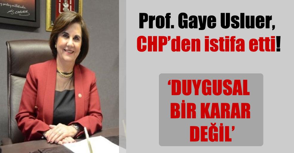 Prof. Gaye Usluer, CHP'den istifa etti!
