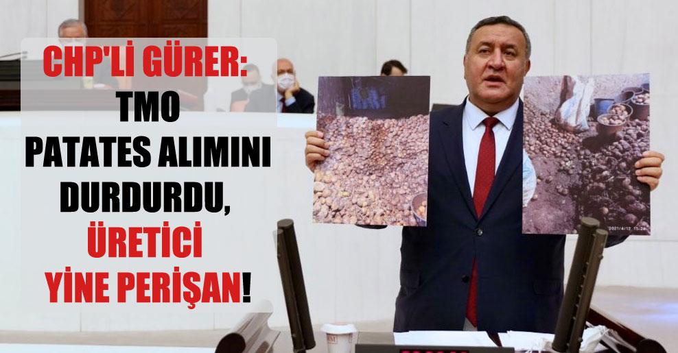 CHP'li Gürer: TMO patates alımını durdurdu, üretici yine perişan!