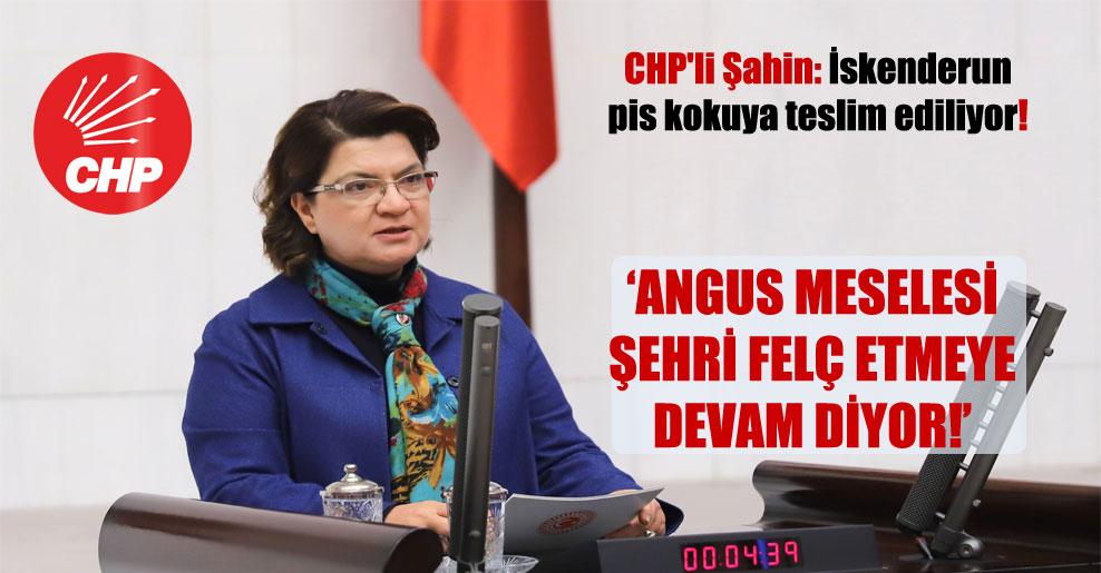 CHP'li Şahin: İskenderun pis kokuya teslim ediliyor!