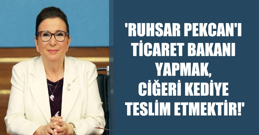 'Ruhsar Pekcan'ı Ticaret Bakanı yapmak, ciğeri kediye teslim etmektir!'