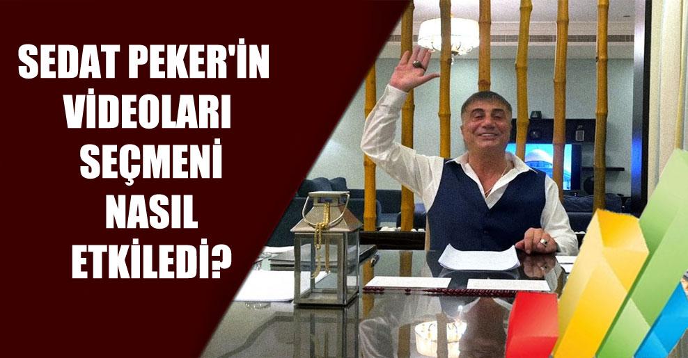 Sedat Peker'in videoları seçmeni nasıl etkiledi?