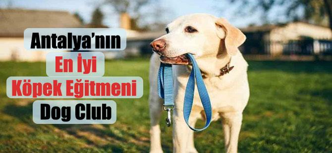 Antalya'nın En İyi Köpek Eğitmeni Dog Club