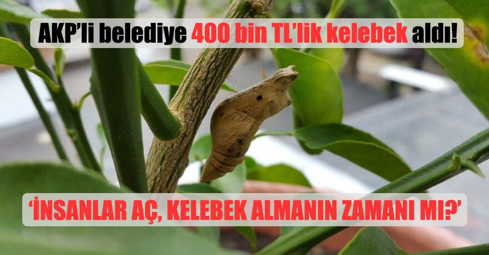 AKP'li belediye 400 bin TL'lik kelebek aldı!