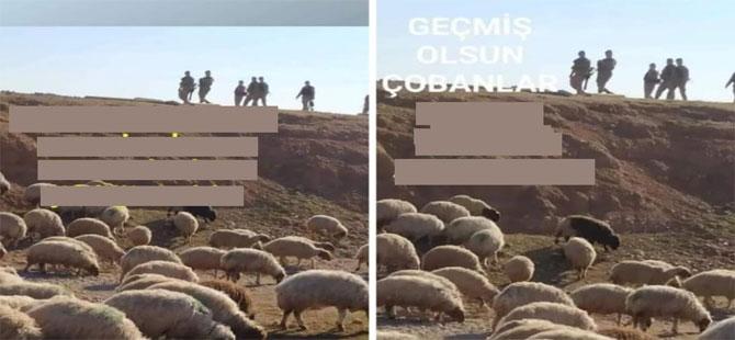 Meclis koyunlara gözaltı tartışması!