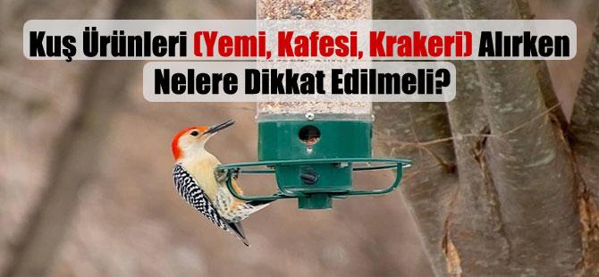 Kuş Ürünleri (Yemi, Kafesi, Krakeri) Alırken Nelere Dikkat Edilmeli?