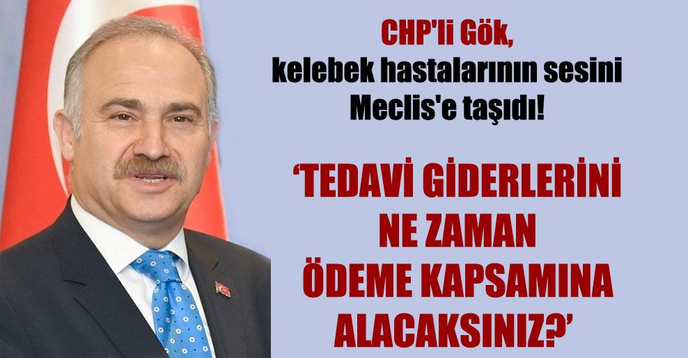 CHP'li Gök, kelebek hastalarının sesini Meclis'e taşıdı!