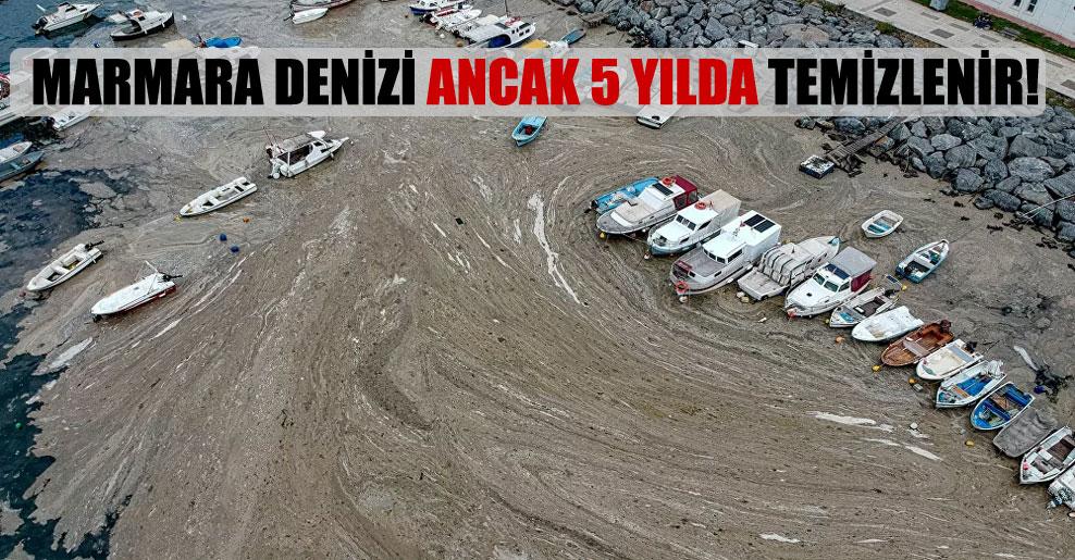 Marmara Denizi ancak 5 yılda temizlenir!