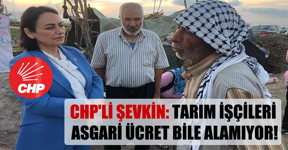 CHP'li Şevkin: Tarım işçileri asgari ücret bile alamıyor!