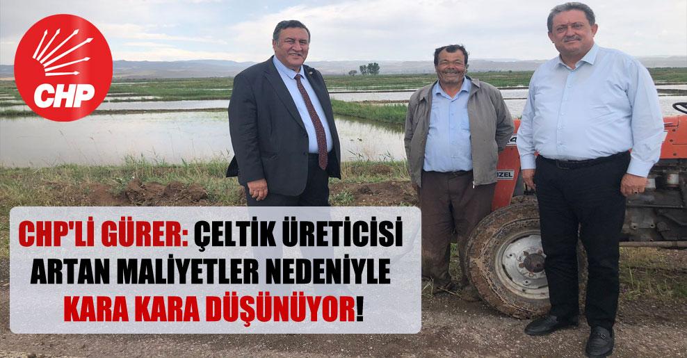 CHP'li Gürer: Çeltik üreticisi artan maliyetler nedeniyle kara kara düşünüyor!