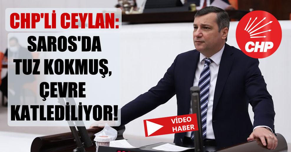CHP'li Ceylan: Saros'da tuz kokmuş, çevre katlediliyor!