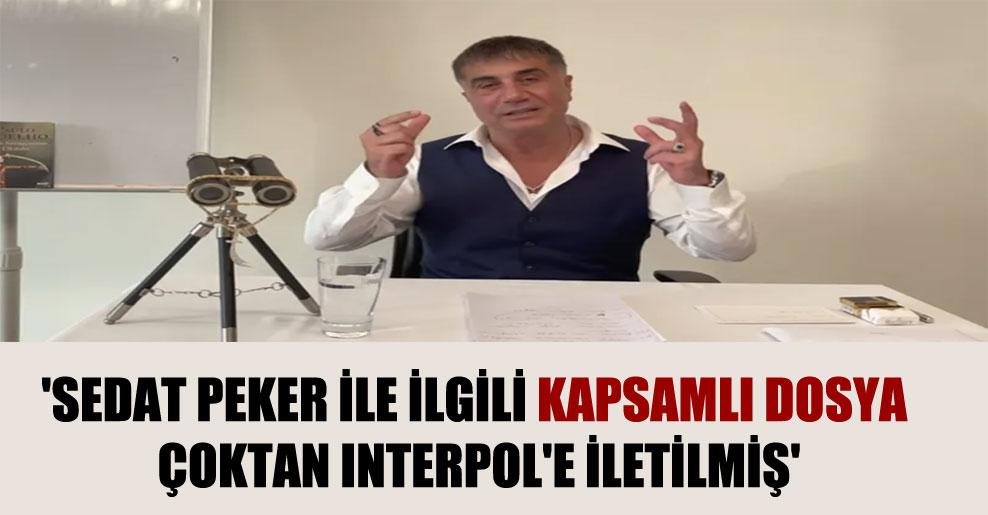 'Sedat Peker ile ilgili kapsamlı dosya çoktan Interpol'e iletilmiş'