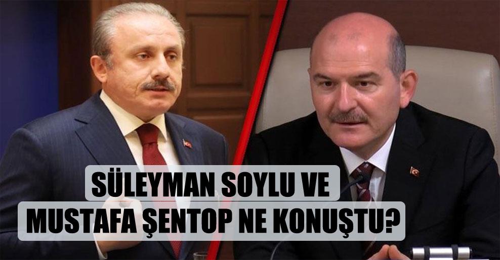 Süleyman Soylu ve Mustafa Şentop ne konuştu?