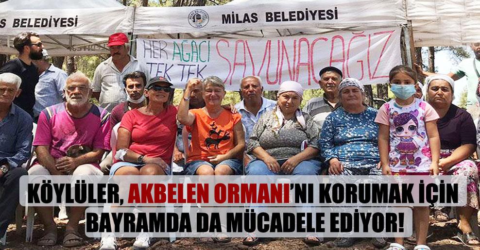 Köylüler, Akbelen Ormanı'nı korumak için bayramda da mücadele ediyor!