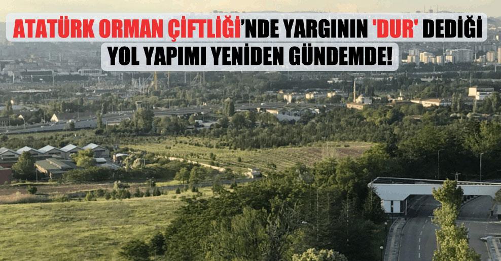 Atatürk Orman Çiftliği'nde yargının 'dur' dediği yol yapımı yeniden gündemde!