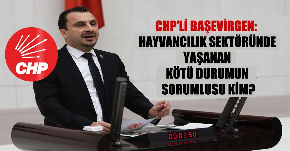 CHP'li Başevirgen: Hayvancılık sektöründe yaşanan kötü durumun sorumlusu kim?