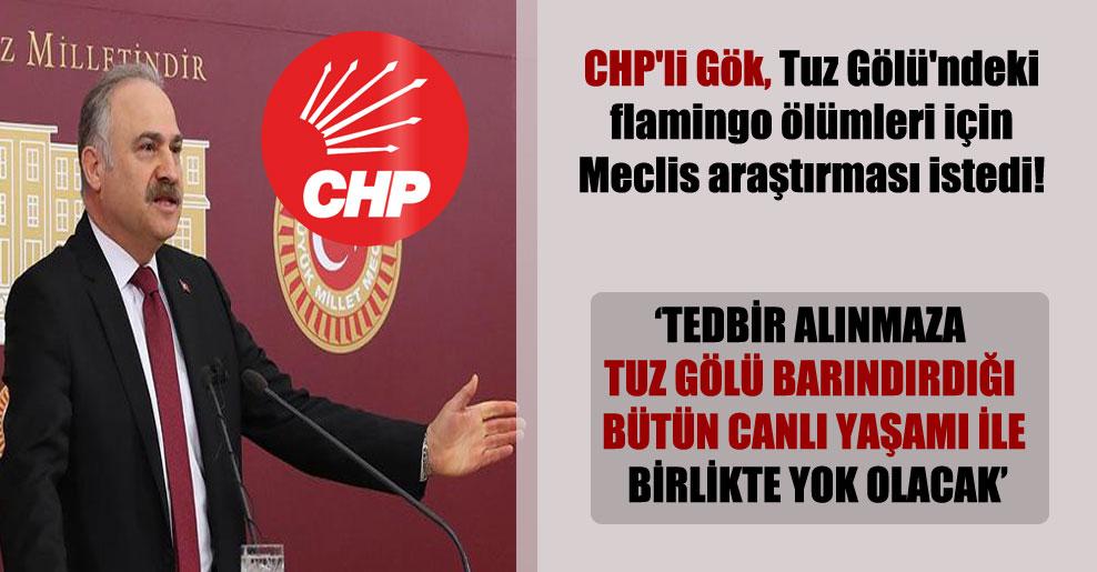 CHP'li Gök, Tuz Gölü'ndeki flamingo ölümleri için Meclis araştırması istedi!