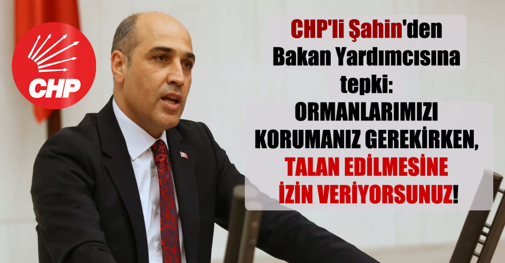 CHP'li Şahin'den Bakan Yardımcısına tepki: Ormanlarımızı korumanız gerekirken, talan edilmesine izin veriyorsunuz!