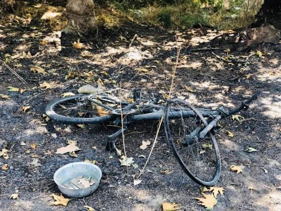 gelibolu orman yangını 3