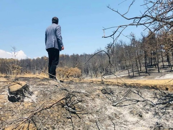 gelibolu orman yangını 4