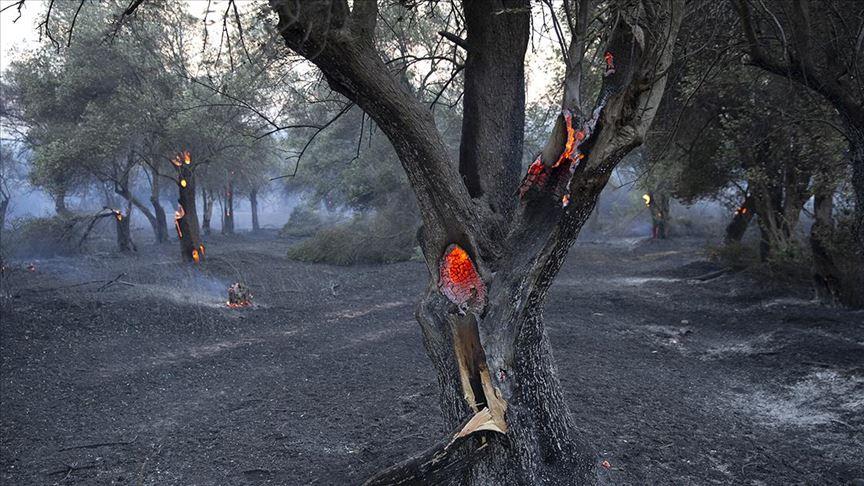 Alevlerin arasında kalan 2 yangın işçisi hayatını kaybetti
