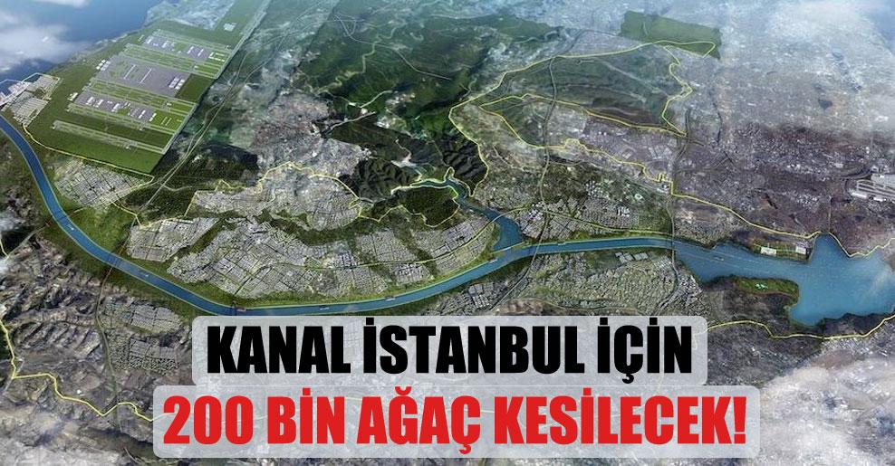 Kanal İstanbul için 200 bin ağaç kesilecek!