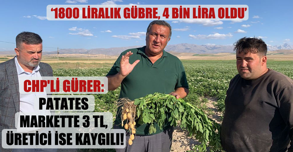 CHP'li Gürer: Patates markette 3 TL, üretici ise kaygılı!