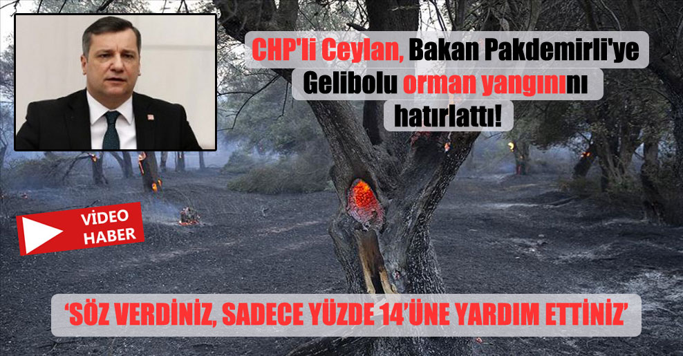 CHP'li Ceylan, Bakan Pakdemirli'ye Gelibolu orman yangınını hatırlattı!