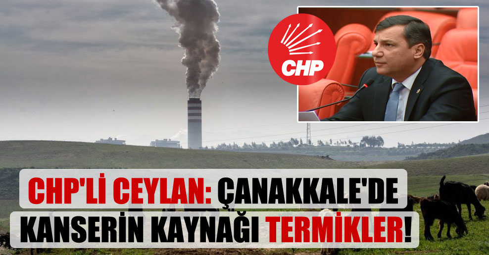 CHP'li Ceylan: Çanakkale'de kanserin kaynağı termikler!