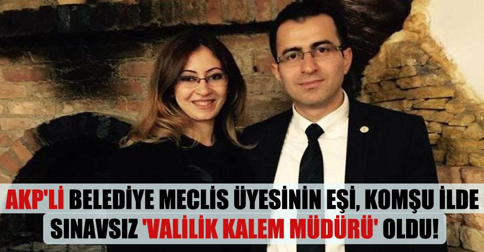AKP'li belediye meclis üyesinin eşi, komşu ilde sınavsız 'Valilik Kalem Müdürü' oldu!