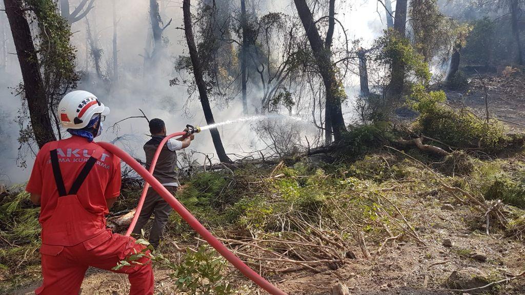 Kazdağları'ndaki yangın devam ediyor