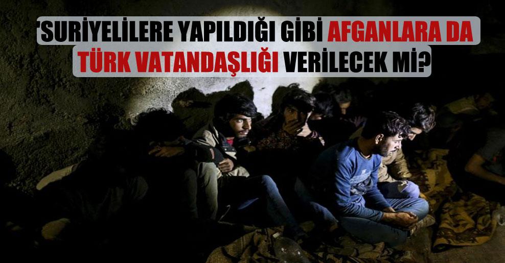 'Suriyelilere yapıldığı gibi Afganlara da Türk vatandaşlığı verilecek mi?'