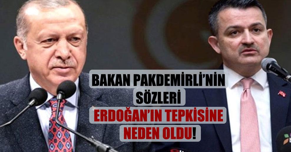 Bakan Pakdemirli'nin sözleri Erdoğan'ın tepkisine neden oldu!