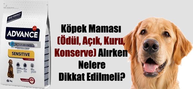 Köpek Maması (Ödül, Açık, Kuru, Konserve) Alırken Nelere Dikkat Edilmeli?