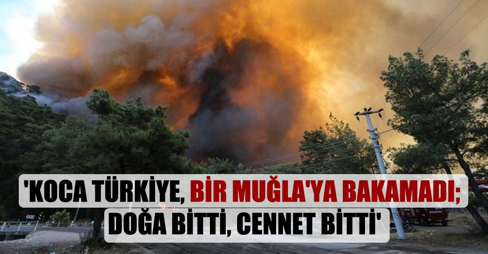 'Koca Türkiye, bir Muğla'ya bakamadı; doğa bitti, cennet bitti'