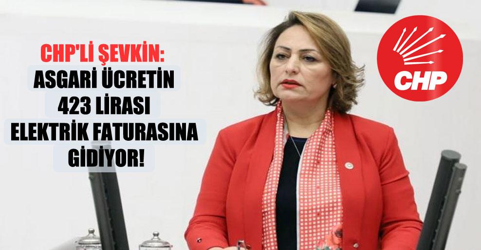 CHP'li Şevkin: Asgari ücretin 423 lirası elektrik faturasına gidiyor!