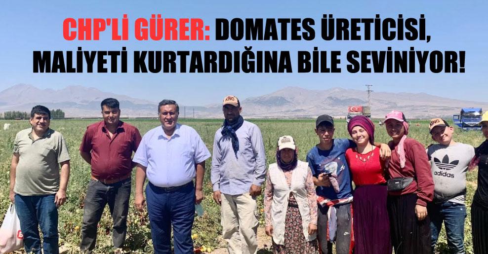 CHP'li Gürer: Domates üreticisi, maliyeti kurtardığına bile seviniyor!