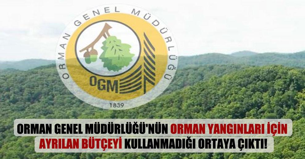 Orman Genel Müdürlüğü'nün orman yangınları için ayrılan bütçeyi kullanmadığı ortaya çıktı!