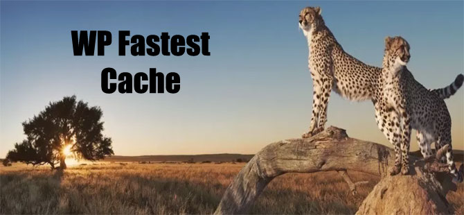 WP Fastest Cache