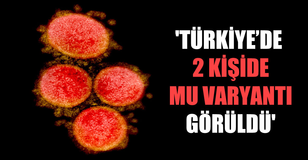 'Türkiye'de 2 kişide Mu varyantı görüldü'