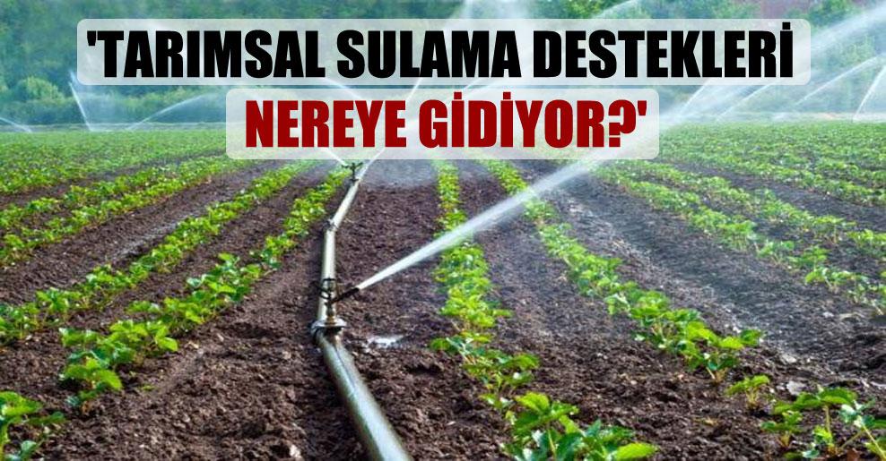 'Tarımsal sulama destekleri nereye gidiyor?'