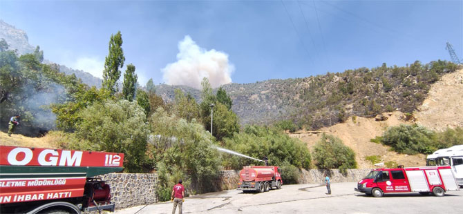 Tunceli'deki yangınların tamamı kontrol altında