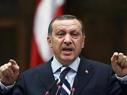 Erdoğan ve cadı avı