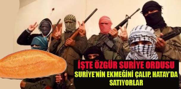 Suriye'nin ekmeğini çalıp, Hatay'da satıyorlar